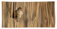Marsh Wren Square Beach Towel