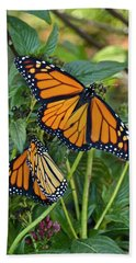 Marvelous Monarchs Beach Sheet by Carol Bradley