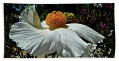 Matilija Poppy Two Beach Towel