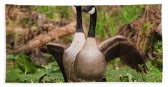 Mating Pair Guarding The Nest Beach Sheet