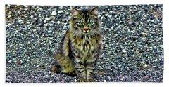 Mattie The Main Coon Cat Beach Sheet