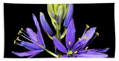 Meadow Hyacinth 002 Beach Towel by George Bostian