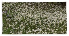 Beach Towel featuring the photograph Meadow Of Daisey Wildflowers Panorama by James BO Insogna