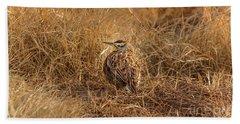 Meadowlark Hiding In Grass Beach Towel by Robert Frederick