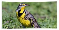 Meadowlark On The Runway Beach Towel