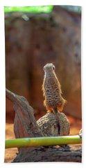 Meerkat 2 Beach Towel