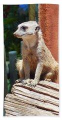 Meerkat Sentry Beach Sheet