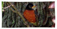 Michigan State Bird Robin Beach Sheet