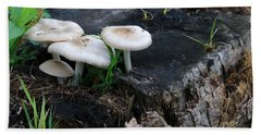 Mid Summers Fungi Beach Towel