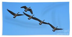 Beach Towel featuring the photograph Migrating Geese by Ann E Robson