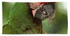 Military Macaw Beach Towel