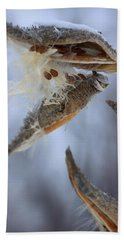 Beach Towel featuring the photograph Milkweed by Viviana  Nadowski