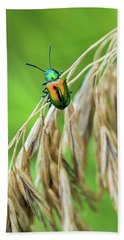 Beach Towel featuring the photograph Mini Metallic Magnificence  by Bill Pevlor