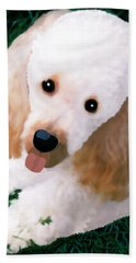 Miniature Poodle Albie Beach Sheet by Marian Cates