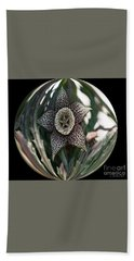 Captured Carrion Succulent Beach Towel
