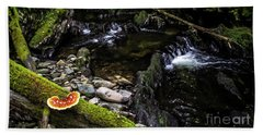 Beach Towel featuring the photograph Missisquoi River In Vermont - 2 by James Aiken
