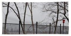 Missouri River Fence Beach Sheet