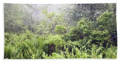 Beach Towel featuring the photograph Misty Afternoon In An Eastern Forest Thicket, Pennsylvanis by A Gurmankin
