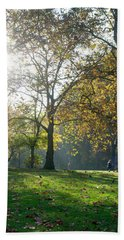 Beach Towel featuring the photograph Misty Fall Day At Hyde Park by Haleh Mahbod