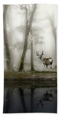 Misty Morning Reflections Beach Towel by Diane Schuster