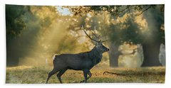 Beach Towel featuring the photograph Misty Walk by Scott Carruthers