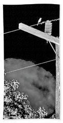Mockingbird On A Wire Beach Towel
