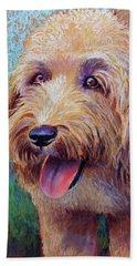 Mojo The Shaggy Dog Beach Sheet