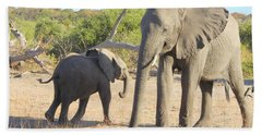 Beach Towel featuring the photograph Mom And Baby by Betty-Anne McDonald