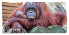 Mom And Baby Orangutan Beach Towel by Stephanie Hayes