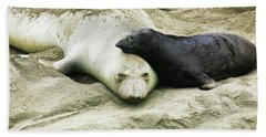 Beach Sheet featuring the photograph Mom And Pup by Anthony Jones
