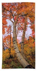 Moments Of Fall Beach Towel