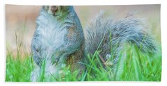 Momma Squirrel Beach Towel