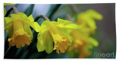 Beach Towel featuring the photograph Mom's Daffs by Lois Bryan