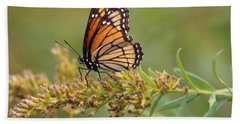 Monarch Butterfly  Beach Sheet