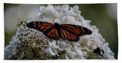 Monarch Butterfly Feeding On Hydrangea Tree Beach Towel