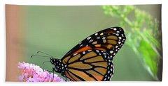 Monarch Butterfly Beach Sheet by Kathy Eickenberg