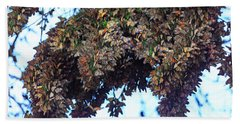 Monarch Butterfly Migration Beach Towel