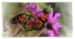 Beach Towel featuring the photograph Monarch Butterfly On The Pink Cosmos by Yumi Johnson