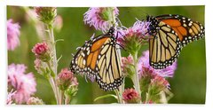 Monarch Butterfly Pair Square Format Beach Sheet