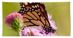 Monarch Butterfly Square Beach Sheet