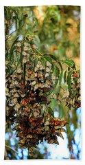 Monarch Butterlies Migration II Beach Sheet