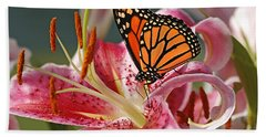 Monarch On A Stargazer Lily Beach Towel