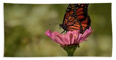 Beach Towel featuring the photograph Monarch On Pink Zinnia by Ann Bridges