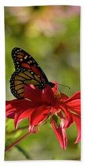 Monarch On Red Zinnia Beach Sheet