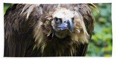 Beach Towel featuring the photograph Monk Vulture 3 by Heiko Koehrer-Wagner