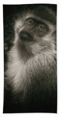 Monkey Portrait Beach Sheet