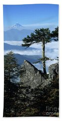Monkey Puzzle Trees In Huerquehue National Park Beach Towel