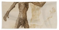 Monkey Standing, Anterior View Beach Towel