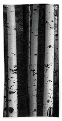 Beach Towel featuring the photograph Monochrome Wilderness Wonders by James BO Insogna