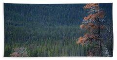 Montana Tree Line Beach Sheet